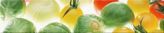vegetable_title.jpg