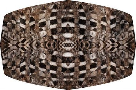 moooi carpets_aristo quagga_450