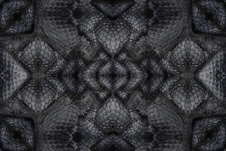 moooi carpets_dwarf rhino_450