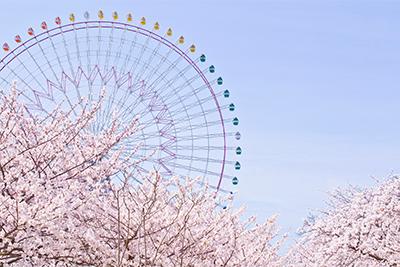 9.15_kyoto4