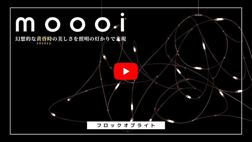 09.11_moooitopix1